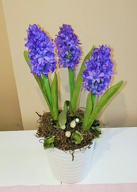 Tavaszi asztaldísz - jácint